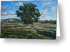 Oak Tree In The Vale Of Pewsey Greeting Card by Andrew Taylor