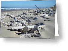 Ocean Coastal art prints Driftwood Beach Greeting Card by Baslee Troutman