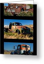 Old Guys Trio 4 Greeting Card by Idaho Scenic Images Linda Lantzy