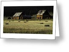 Old Homestead-potomac Montana Greeting Card by Thomas Schoeller