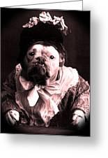 Old Lady English Bulldog Greeting Card by Tisha McGee