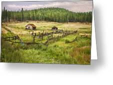 Old Montana Homestead Greeting Card by Sharon Foster
