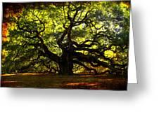 Old Old Angel Oak In Charleston Greeting Card by Susanne Van Hulst