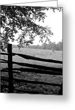 Old Sturbridge Fence In Black And White Greeting Card by Belinda Dodd
