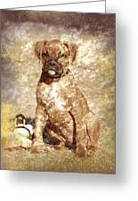 Old Time Boxer Portrait Greeting Card by Angie Tirado-McKenzie