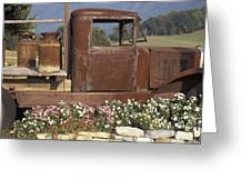 Old Truck In Tennessee Greeting Card by Stan and Anne Foster