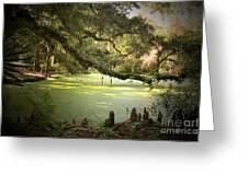 On Swamp's Edge Greeting Card by Scott Pellegrin
