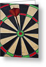 On Target Bullseye Greeting Card by Garry Gay