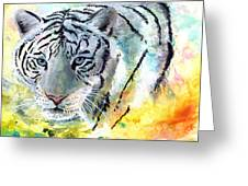 On The Prowl Greeting Card by Sherry Shipley