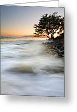 One Against The Tides Greeting Card by Mike  Dawson