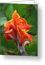 Orange Canna Art Greeting Card by John W Smith III
