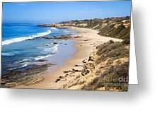 Orange County California Greeting Card by Paul Velgos