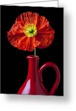 Orange Iceland Poppy In Red Pitcher Greeting Card by Garry Gay