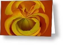 Orb 1 Greeting Card by Elena Nosyreva