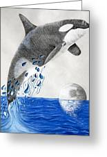 Orca Greeting Card by Mayhem Mediums