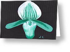 Orchid-paphiopedilum Bob Nagel Greeting Card by Jose Valeriano