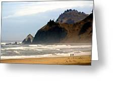 Oregon Coast 12 Greeting Card by Marty Koch