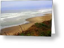 Oregon Coast 3 Greeting Card by Marty Koch
