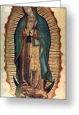 Our Lady Of Guadalupe Greeting Card by Pam Neilands