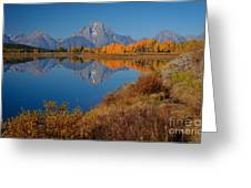Oxbow Bend Greeting Card by Idaho Scenic Images Linda Lantzy