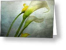 Painted Arum Greeting Card by Bernard Jaubert