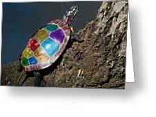 Painted Painted Turtle Greeting Card by Warren M Gray