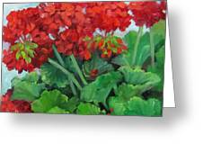 Painting of Red Geraniums Greeting Card by Cheri Wollenberg