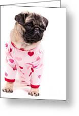 Pajama Party Greeting Card by Edward Fielding