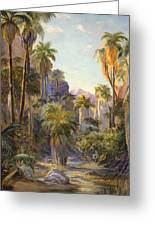 Palm Canyon Greeting Card by Lewis A Ramsey