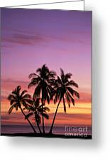 Palm Cluster Greeting Card by Allan Seiden - Printscapes