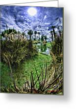 Palm Desert Sky Greeting Card by Blake Richards