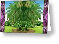 Palm Tree Ally Greeting Card by Bell And Todd