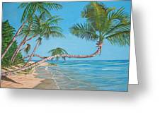 Palm Tree Greeting Card by Edward Maldonado