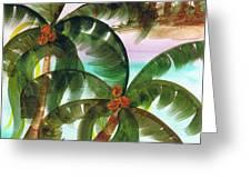 Palm Trees Breeze Greeting Card by Cheryl Fox