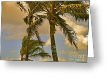 Palm Trees Greeting Card by Silvie Kendall