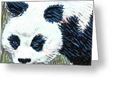 Panda Greeting Card by Dy Witt