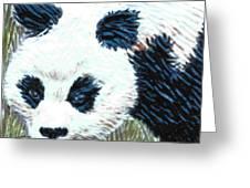 Panda Greeting Card by Dy Witt