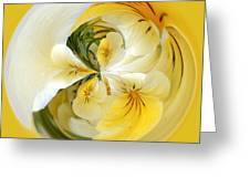 Pansy Ball Greeting Card by James Steele