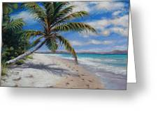 Paradise Found Greeting Card by Susan Jenkins