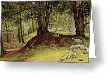 Parkhurst Woods Greeting Card by Richard Redgrave