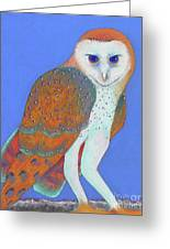 Parliament Of Owls Detail 1 Greeting Card by Tracy L Teeter