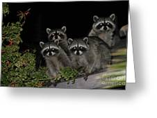 Party Of Five On The Roof Top Greeting Card by Nina Prommer