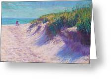 Past the Dunes Greeting Card by Michael Camp