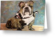 Pastel English Brindle Bull Dog Greeting Card by Patricia L Davidson