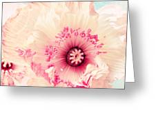Pastell Poppy Greeting Card by Angela Doelling AD DESIGN Photo and PhotoArt