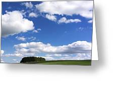 Pasture In Auvergne Greeting Card by Bernard Jaubert