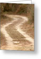 Pathway To Woods Greeting Card by Cheryl Casey