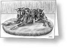 Patience - Doberman Pinscher And Puppy Print Greeting Card by Kelli Swan