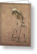 Patient Greeting Card by James W Johnson