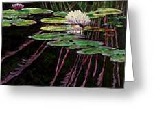 Peaceful Reflections Greeting Card by John Lautermilch